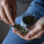 La Marijuana ora si acquista in tabaccheria:<br> la Cannabis Light