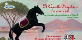 equitazione, cavalli