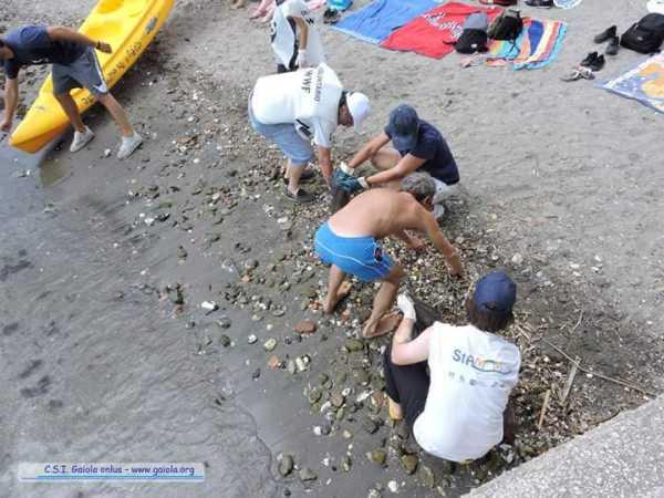 mare, napoli, inquinamento, wwf
