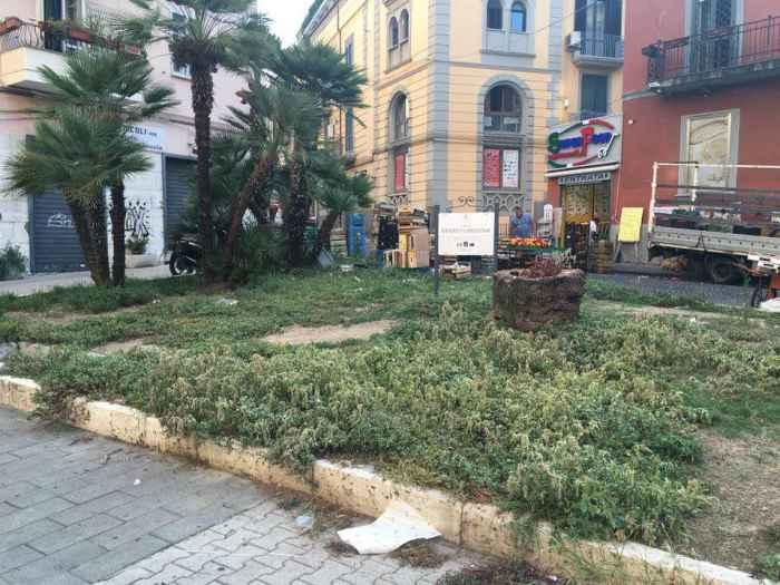Verde pubblico senza manutenzione. Che fine hanno fatto i giardinieri comunali?