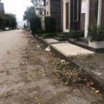 Napoli, al via gli interventi di taglio e sistemazione nei cimiteri
