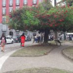 (Video) Piazza Vittoria: una donna nuda sale su un albero e lancia rami e fiori