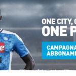 Campagna abbonamenti del Napoli, l'avvocato Erich Grimaldi chiede alcune modifiche