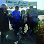 Pini di Posillipo, Bassolino firma la petizione