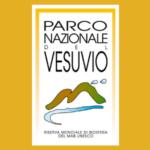 Un dato straordinario, record di sempre relativo alle presenze al Cratere del Vesuvio