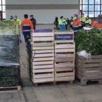 Bonus spesa, più di 10mila nuovi aventi diritto. Dal 4 maggio anche pacchi alimentari per altre 3mila famiglie di Napoli