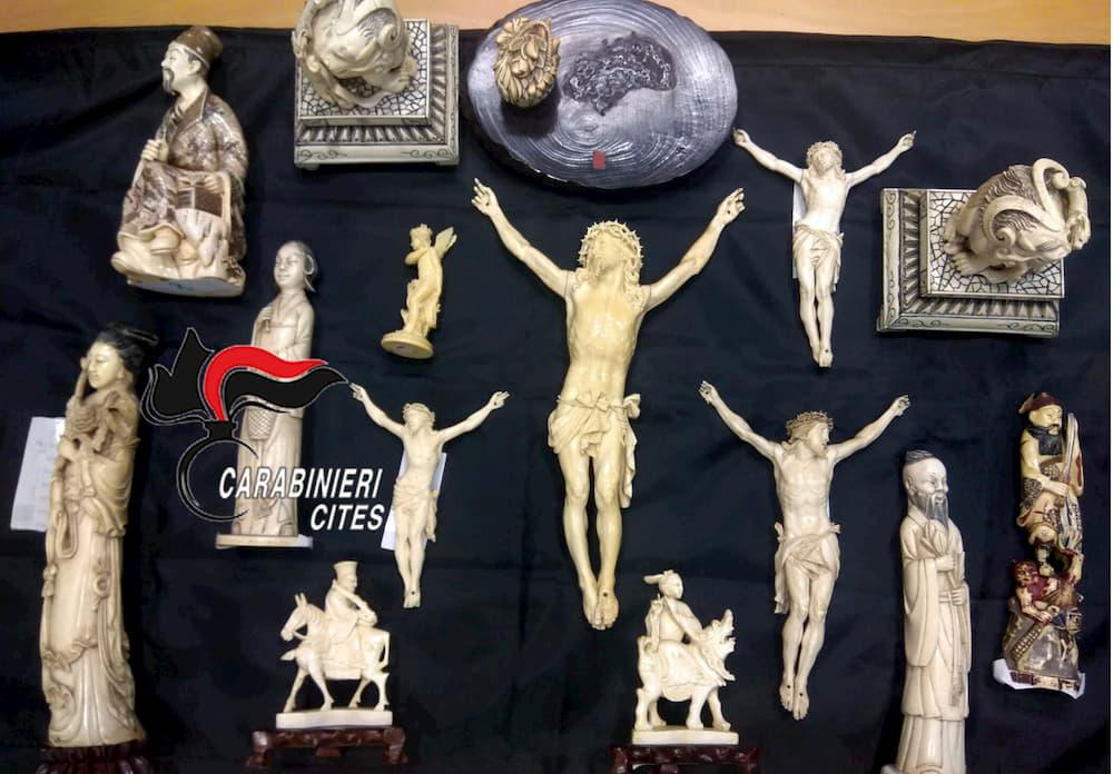 Torre del Greco, vende sculture in avorio ricavate elefanti in via di estinzione: denunciato antiquario