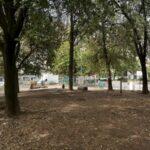 """Degrado in piazza Medaglie d'Oro, l'appello al sindaco: """"Più manutenzione e controllo per un verde vivibile"""""""