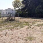 Museo Duca di Martina ancora chiuso: problemi strutturali? Floridiana: ricompaiono i custodi