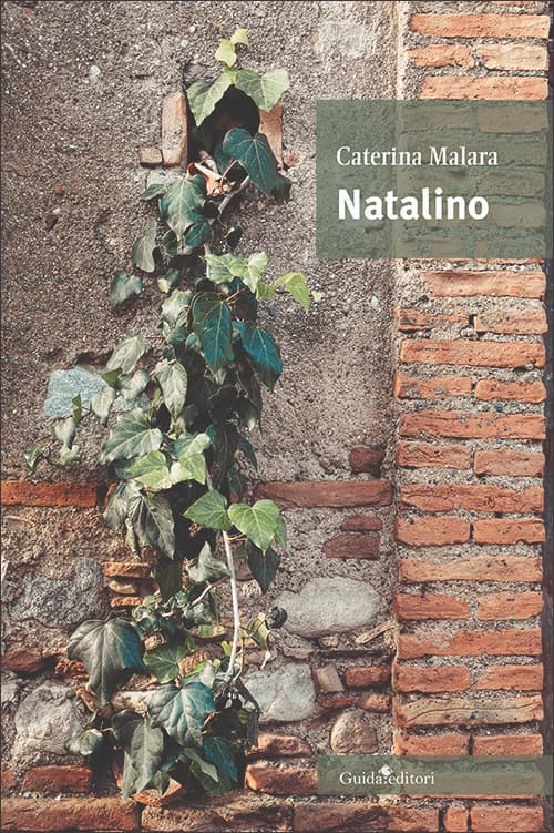 """""""Natalino"""", oltre la storia la denuncia"""