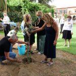 """Villa Domi, piantato l'ulivo per il """"Giardino della Memoria"""""""