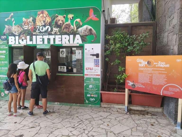 """""""Il Mann e lo Zoo di Napoli in rete per la mostra Gladiatori"""", il dissenso degli ambientalisti: """"Accostamento improprio"""""""